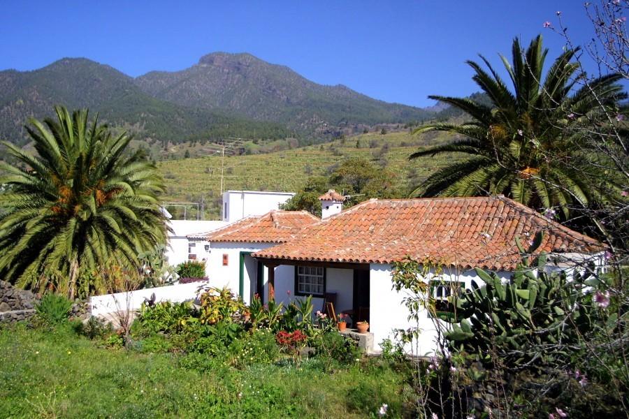 Casa jacinta pura 3 pers el paso - Apartamentos en la palma baratos ...